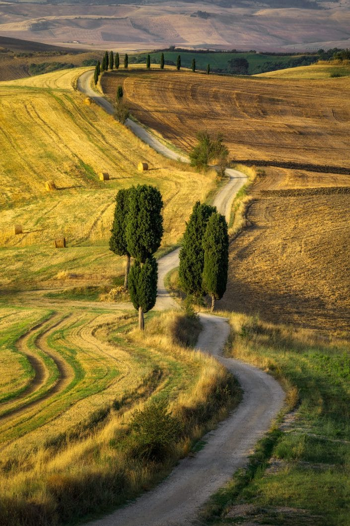 terrapille, gladiator, gladiator road, agriturismo a terrapille, pienza, val d'orcia, san quirico d'orcia, toskana, tuscany, russel crowe, ridley scott, oscar, movie, road, goldene stunde, film, sonnenaufgang