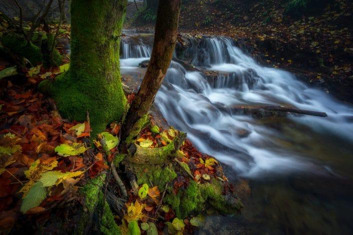 Uracher Wasserfall im Herbst